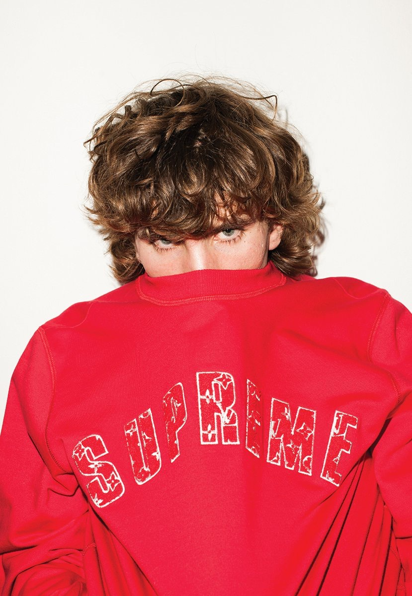 supreme-louis-vuitton-collaboration-2017aw-release-20170630-lookbook