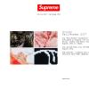 Supreme 2017AWコレクションが8/19(土)に国内で発売開始予定【リークアイテム随時更新中】