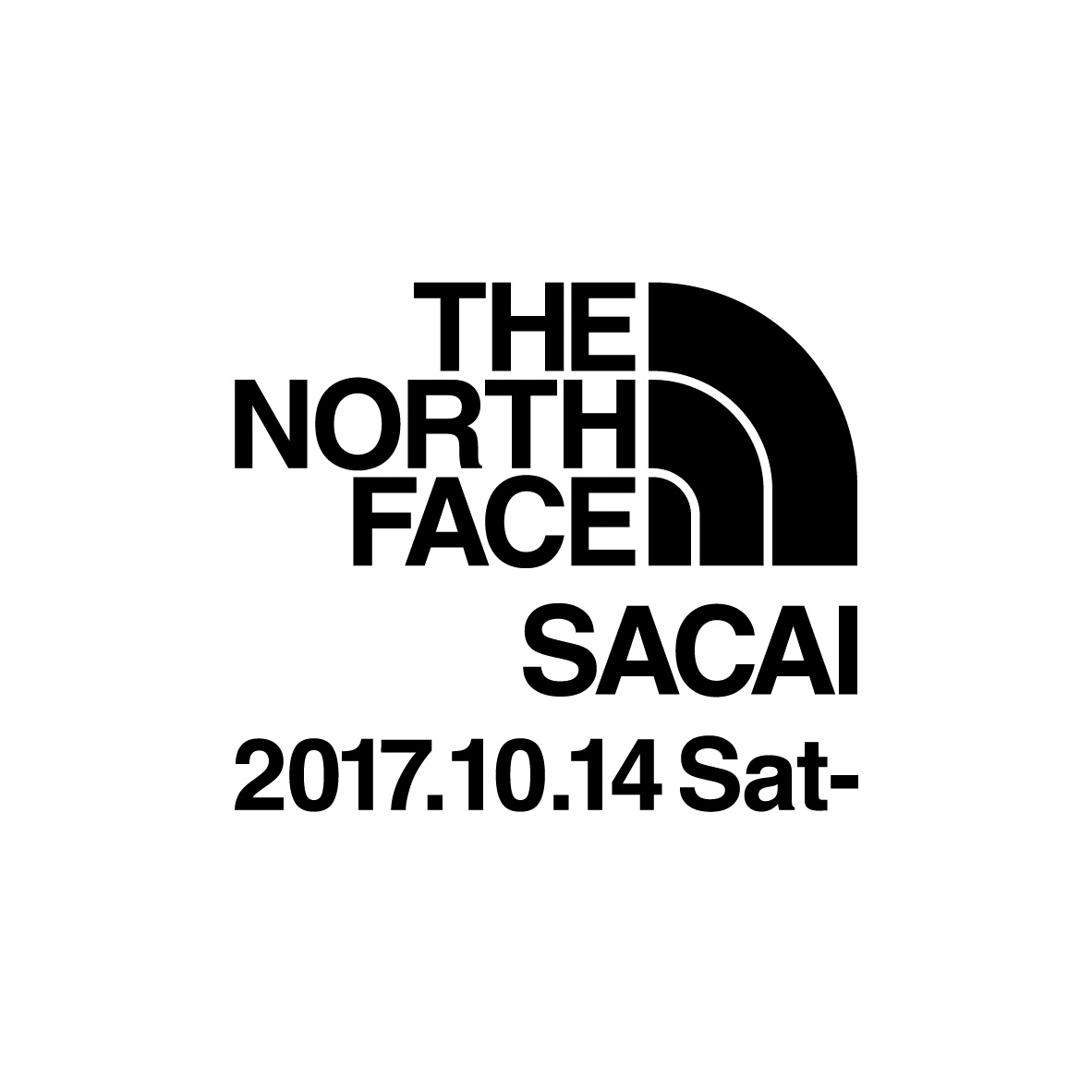 sacai-the-north-face-2017-collaboration-collection