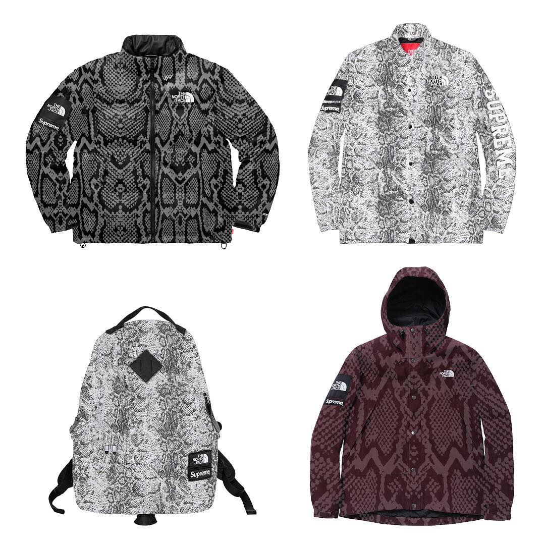 supreme-the-north-face-2nd-delivery-18ss-leak