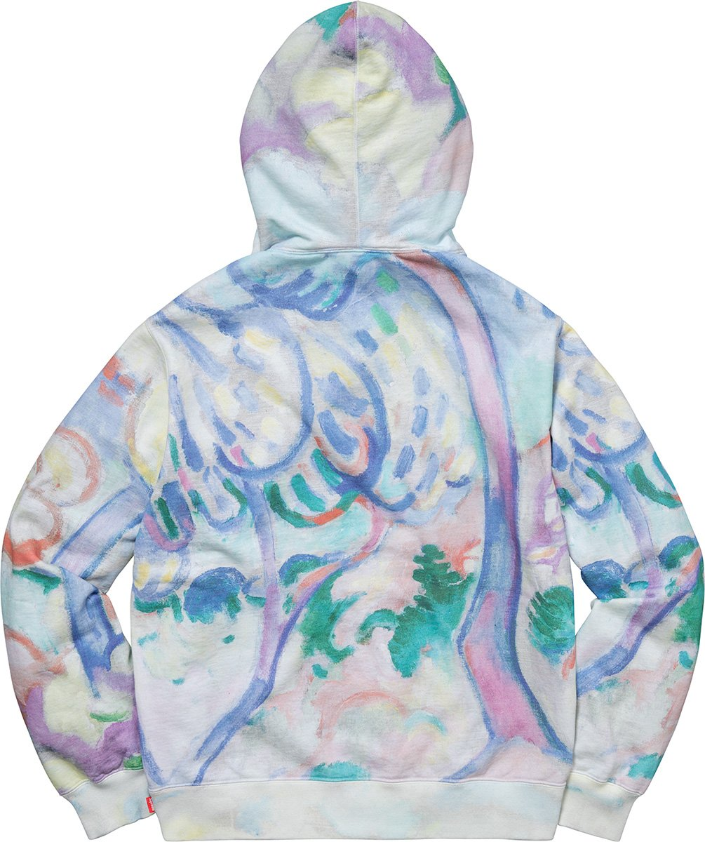 supreme-18ss-spring-summer-landscape-hooded-sweatshirt