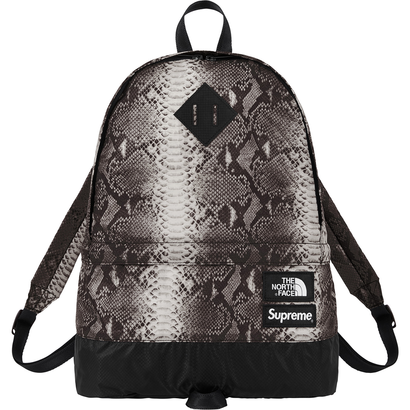 supreme-the-north-face-18ss-2nd-delivery-release-week16-20180609-snakeskin-day-pack