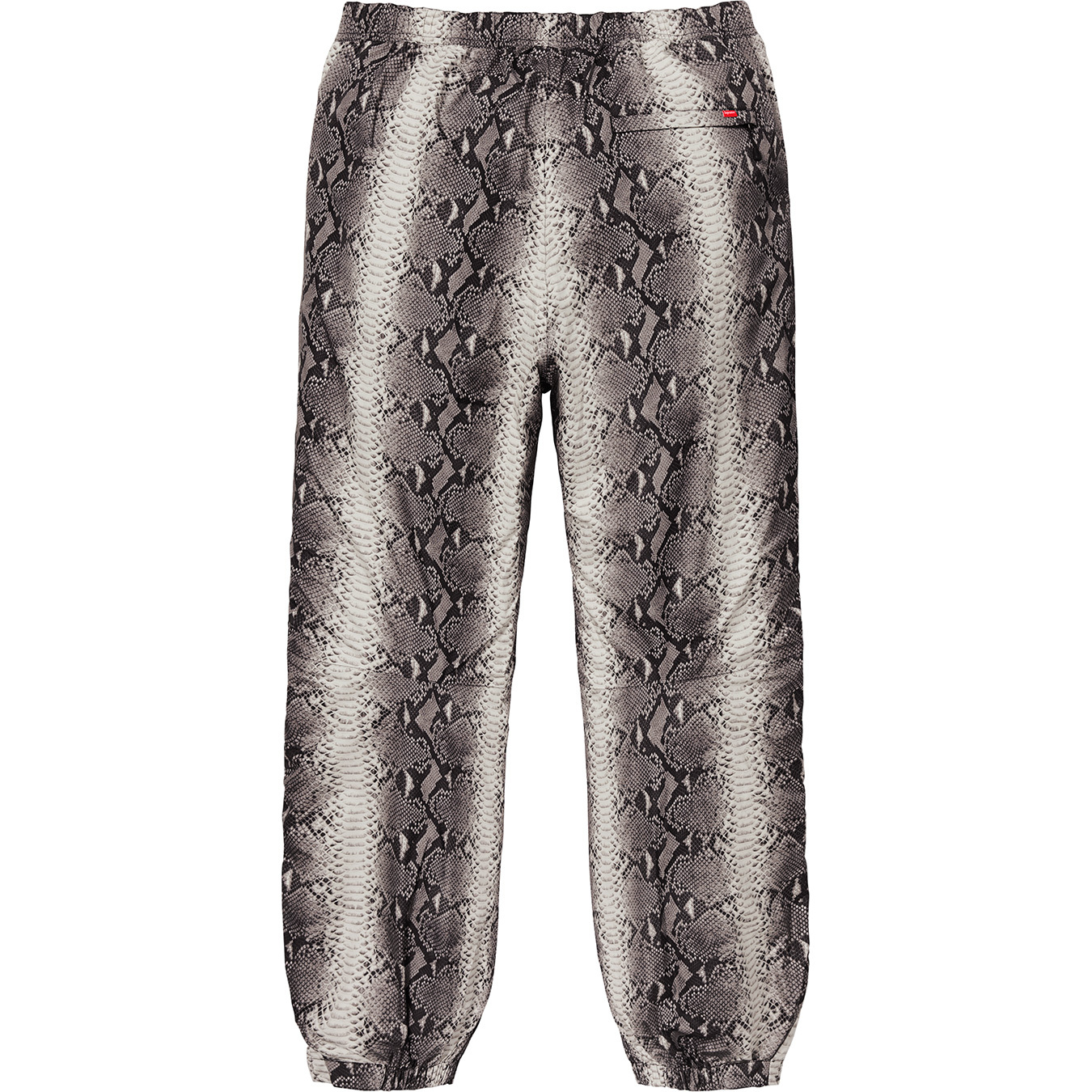 supreme-the-north-face-18ss-2nd-delivery-release-week16-20180609-snakeskin-taped-seam-pant