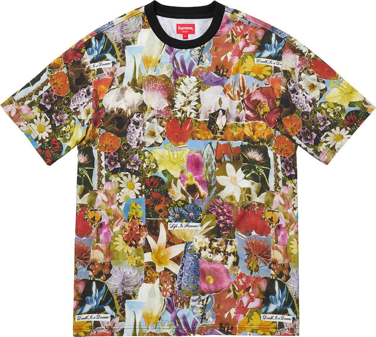 supreme-18aw-fall-winter-dream-s-s-top