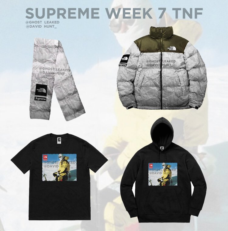 supreme-the-north-face-18aw-leak-mock-up