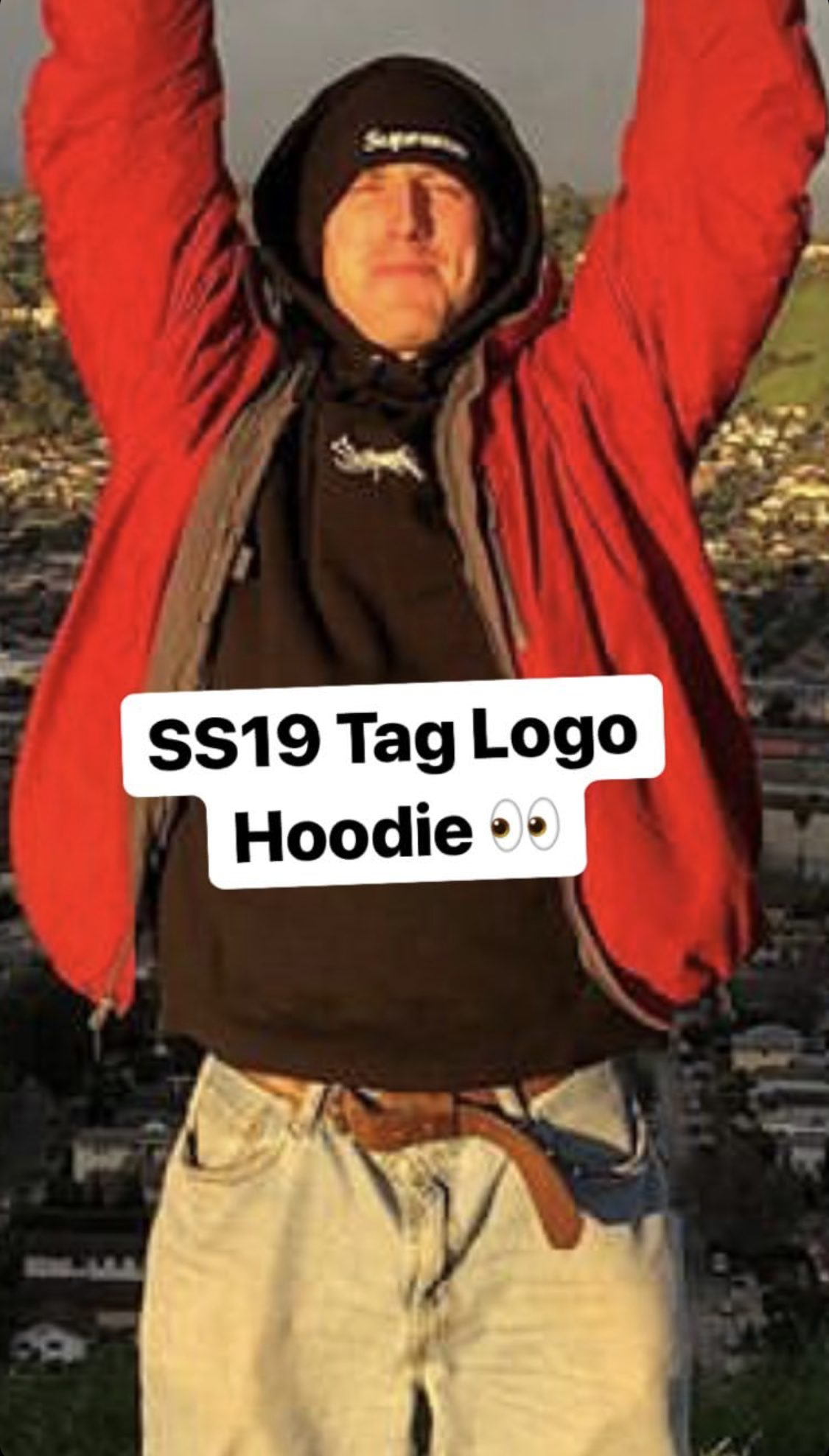 supreme-19ss-spring-summer-tag-logo-hooded-sweatshirt-leak