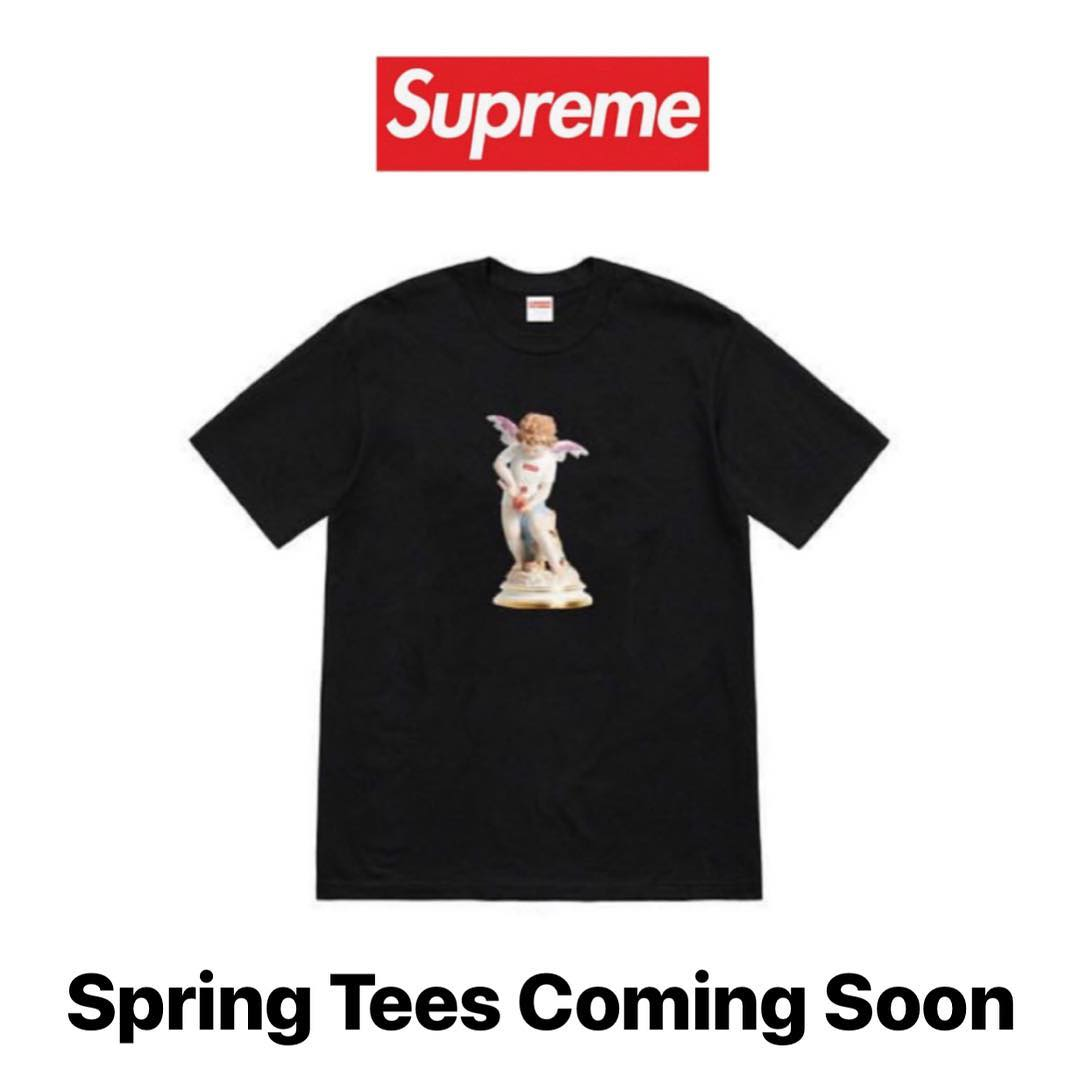 supreme-19ss-spring-tee-leak