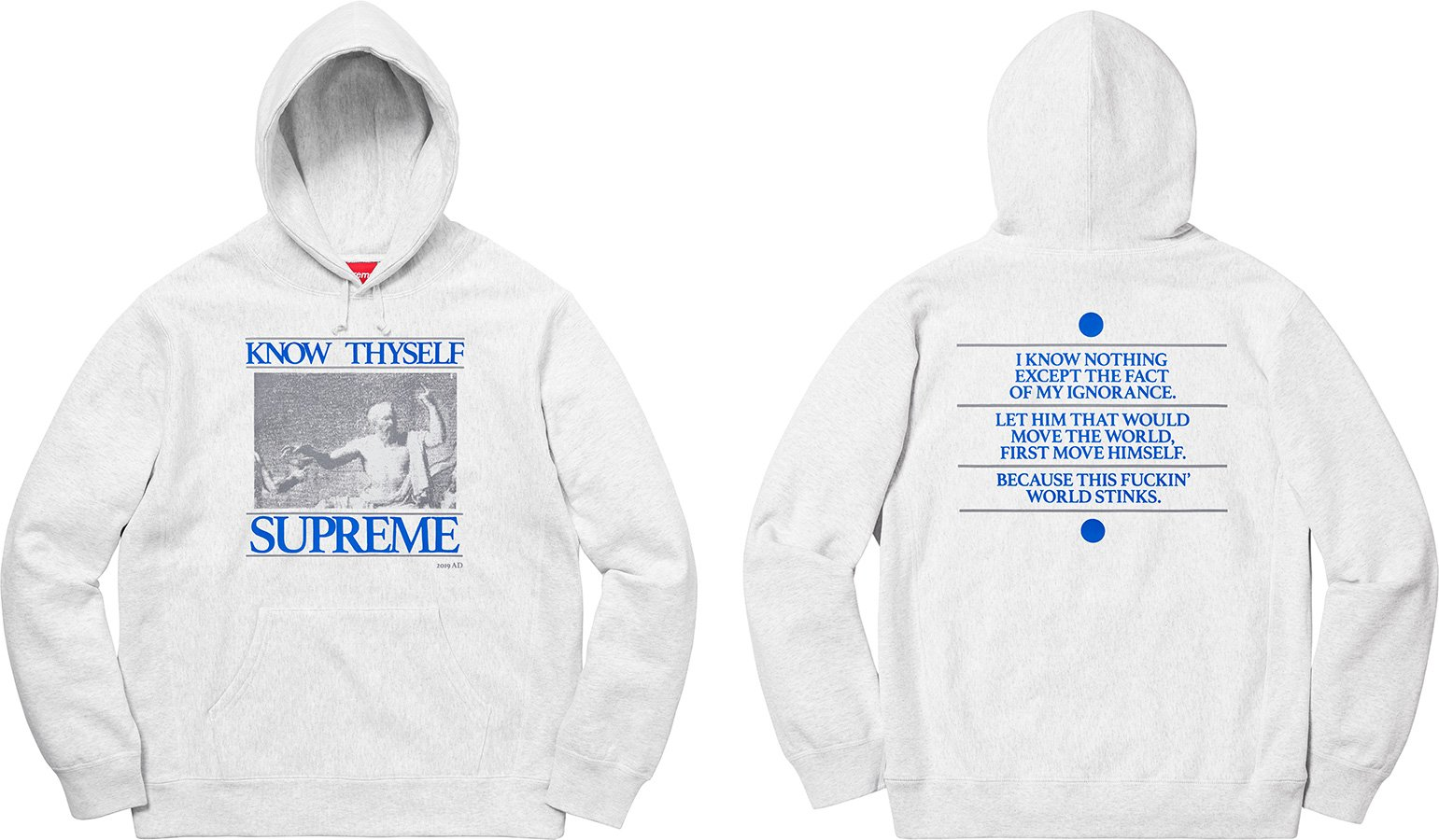 supreme-19ss-spring-summer-know-thyself-hooded-sweatshirt