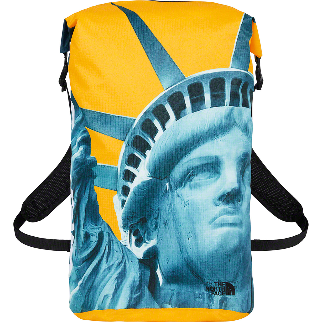 supreme-the-north-face-19aw-19fw-release-20191102-week10-statue-of-liberty-waterproof-backpack