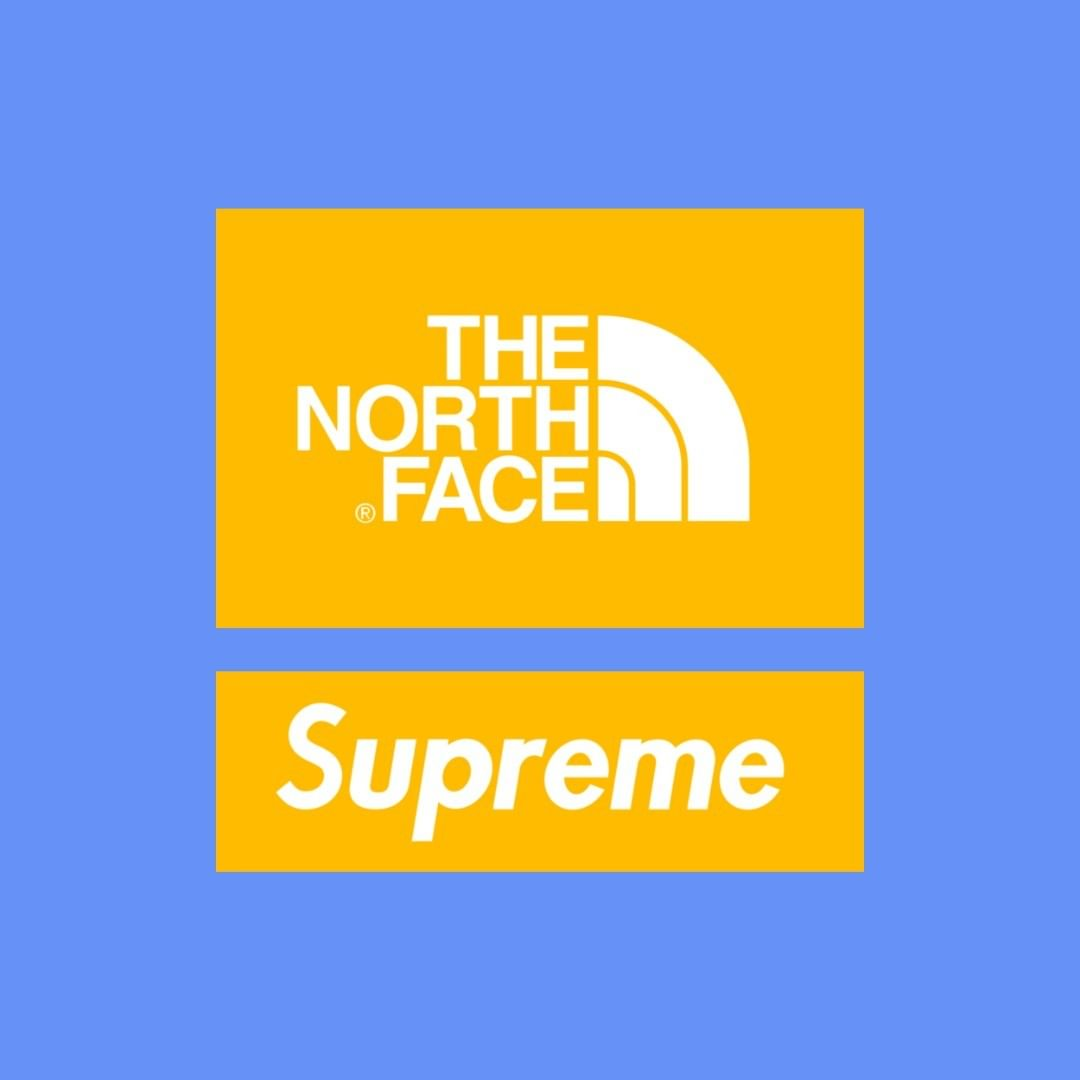 supreme-20ss-spring-summer-the-north-face-part-2