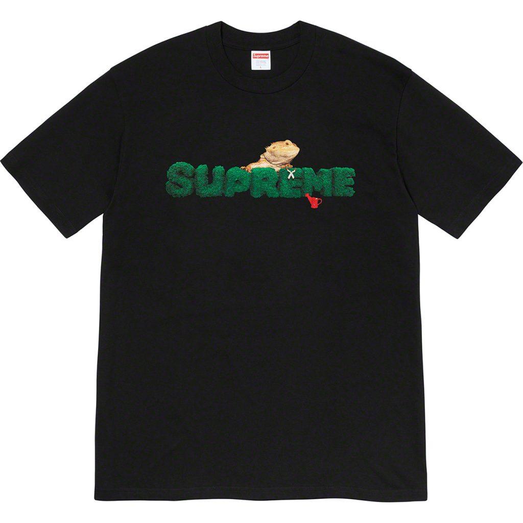 supreme-20ss-summer-tees-20200704-week19-lizard-tee