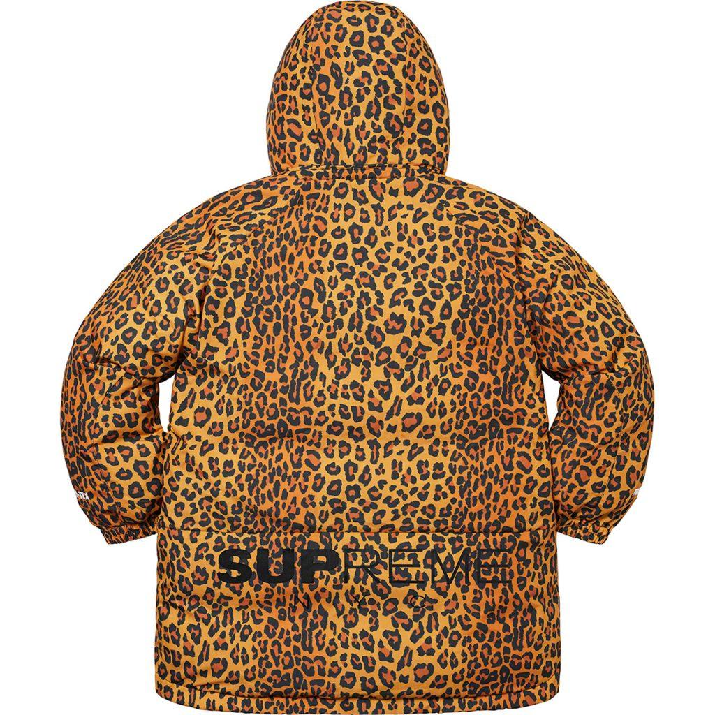 supreme-20aw-20fw-gore-tex-700-fill-down-parka
