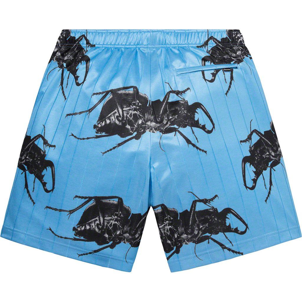supreme-21ss-spring-summer-beetle-short